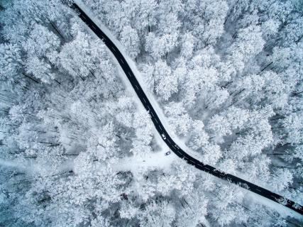 Street through the-winter-forest