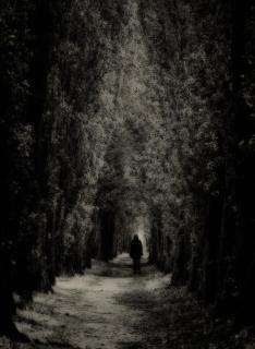 Allein in der Nacht