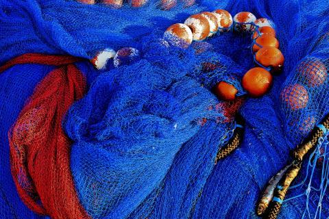 Netz in Blau