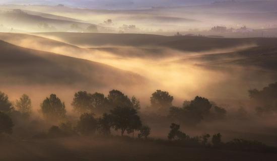 39_Herbst-im-Nebel_Eurofoto