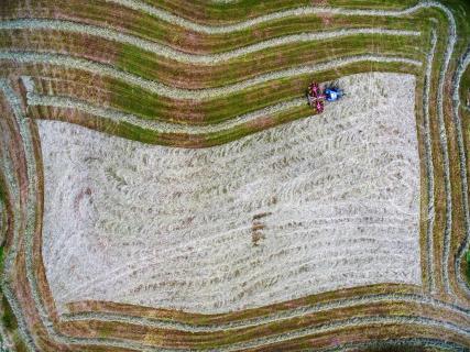 13_Natuerlicher-Rahmen_Eurofoto