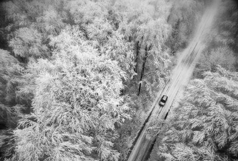Winterwald-Landschaft