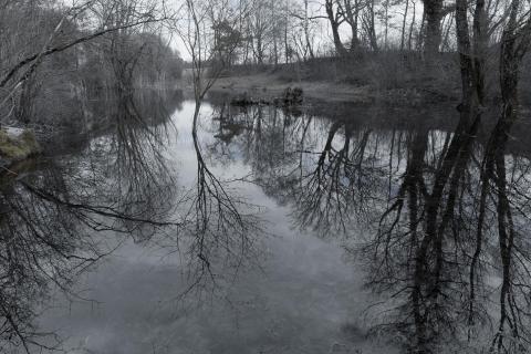 02 Spiegelung im Wasser_Alexander_Gellner