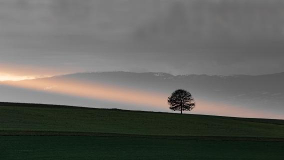 23 Landschaft im Abendlicht_Alexander_Gellner