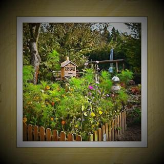 Gartenausschnitt