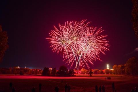 48_Feuerwerk_Dominika_Elsner