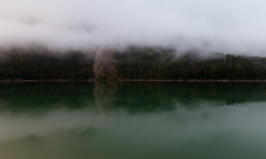 Nebel am Plansee