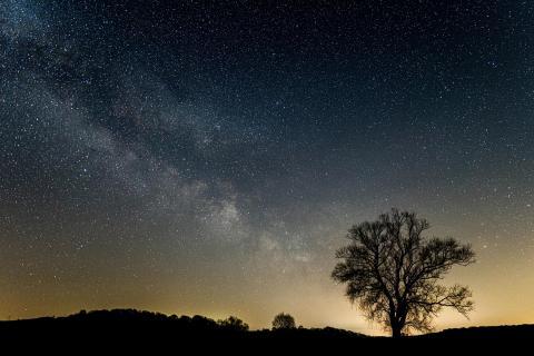 Nacht der Sterne