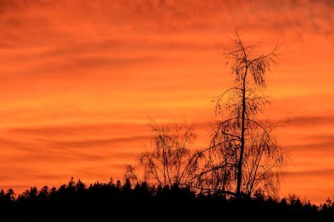 23_Landschaft_im_Abendlicht_KARO6312