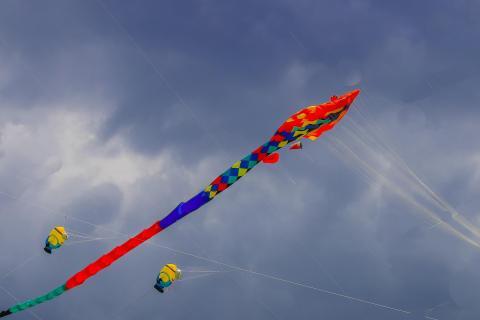 24_rot,blau und gelb_KARO6312