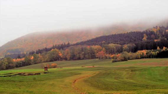 39 Herbst im Nebel_KARO6312