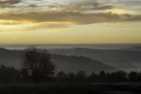 39_Herbst im Nebel_KARO6312
