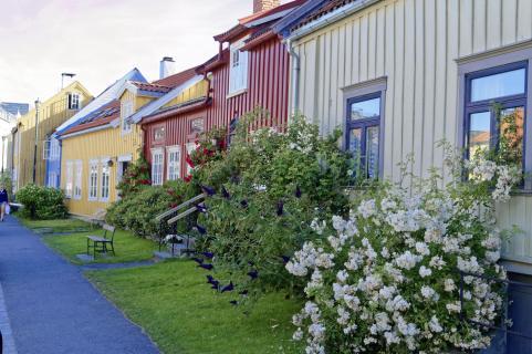 Trondheim02