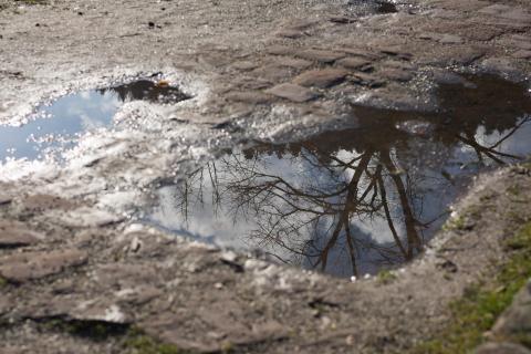 2 Spiegelung_im_Wasser_denhellphotos