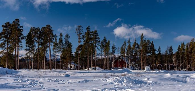 Norwegen Alta_2019 (1 von 1)