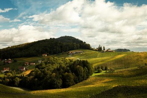 Reise in die Steiermark