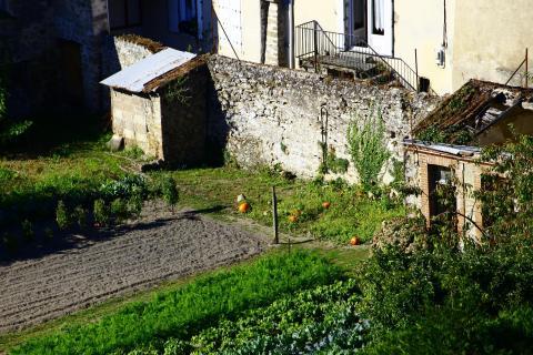 300mm Garten-Einblick