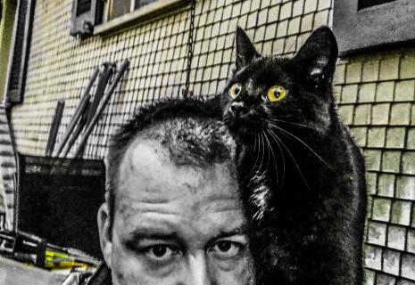 Katze auf Schulter