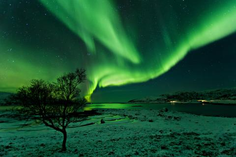Nachts am Fjord