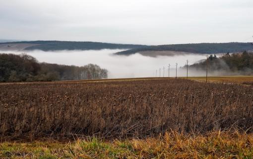 Liebliches Taubertal im Nebel