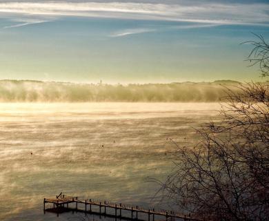 39_Herbst im Nebel_Mirjam Radke