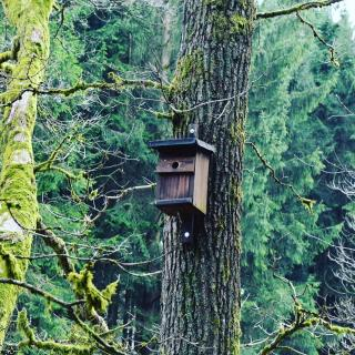 Haus in der natur