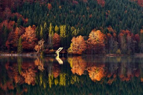 Herbst am Offensee