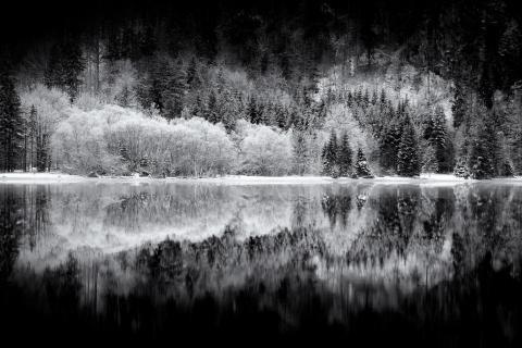 Frostspiegel