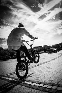 BMX Freesytler 2
