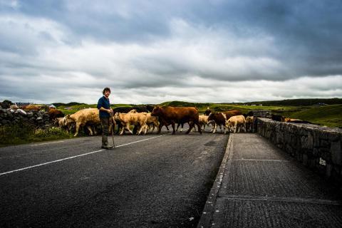 Straßensperre in Doolin (Irland)