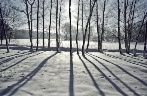 30 Licht und Schatten_Michael_Weirauch