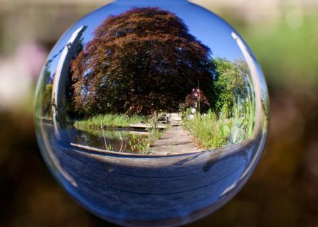 32 Durch Glas fotografieren_Dagmar_Jordan