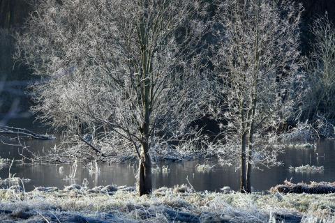 52 Fotografieren Sie ein Winterbild_Dagmar_Jordan