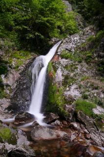 Allerheiligen Wasserfall Schwarzwald
