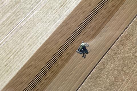 Geometrie eines Bauern