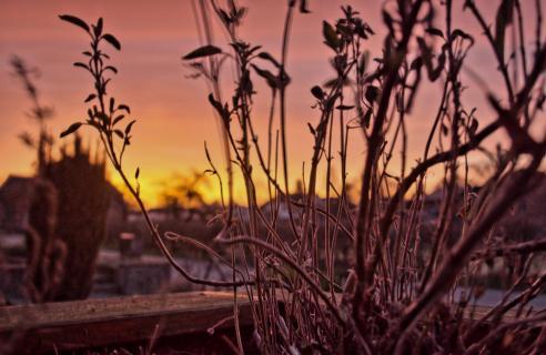Sonnenaufgang Morgenstimmung