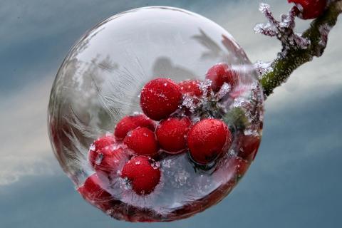 gefrorene Seifenblase 3