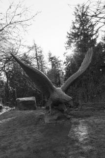Die Schwingen des Adlers