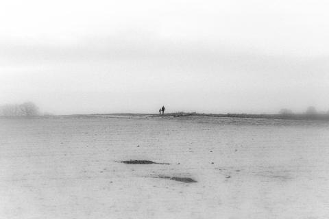 just a walk,        alone