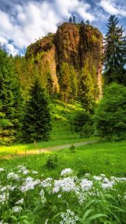 Falkenstein im Thüringer Wald