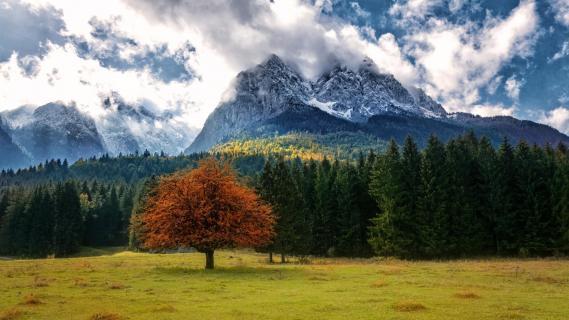 Herbstidylle mit Alpenpanorama