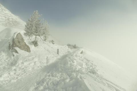 52_Fotografieren-Sie-ein-Winterbild_Janina_Morzinek.jpg