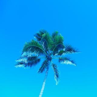 Sommer in Blau