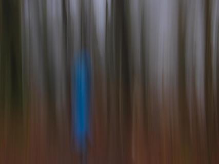 Der blaue Anorak