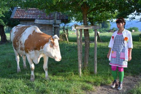 Clown und Kuh