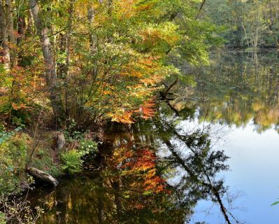 DSC 0123 Herbstsee