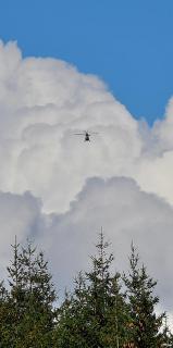 Die in die Wolke fliegen