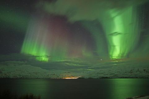 Aurora Iceland Fjord 66°