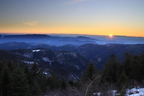 Black Forest Sunset