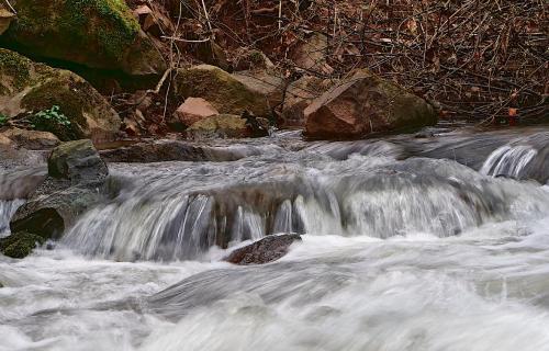 Wasser, Quell des Lebens